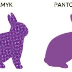 What colors do I choose : CMYK or Pantone?